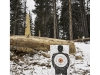 2018d2542, Public Forest Shooting Range, Along Jeep Trail, West of Colorado Springs, Colorado.jpg