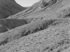 1999n043_v1_death_valley_road