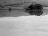 2006n121_nicasio_reservoir