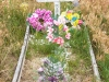 0466_wounded-knee-grave_south-dakota
