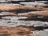 124colorado-ice-flow