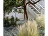 2017n041_10,Porch With Grass & Tree, India Street, San Diego, California.jpg