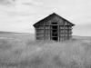 22_2011n041_20_house-in-field