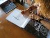 Mass Book_Signing_Paris-L.A. Photo_0394.jpg